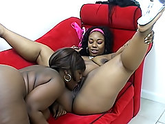 Black BBWs lick their slits before fuck